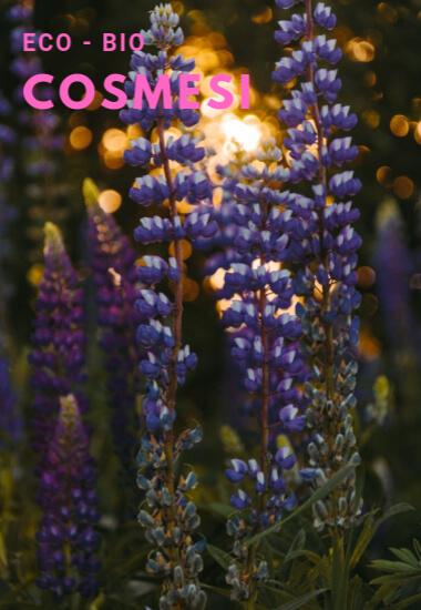 Eco bio cosmesi home